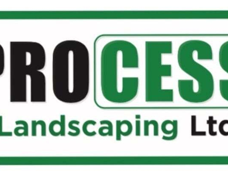 Process Landscaping