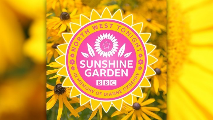 A Small, Bright Space No Matter The Weather - The BBC Sunshine Garden - RHS Tatton 2019