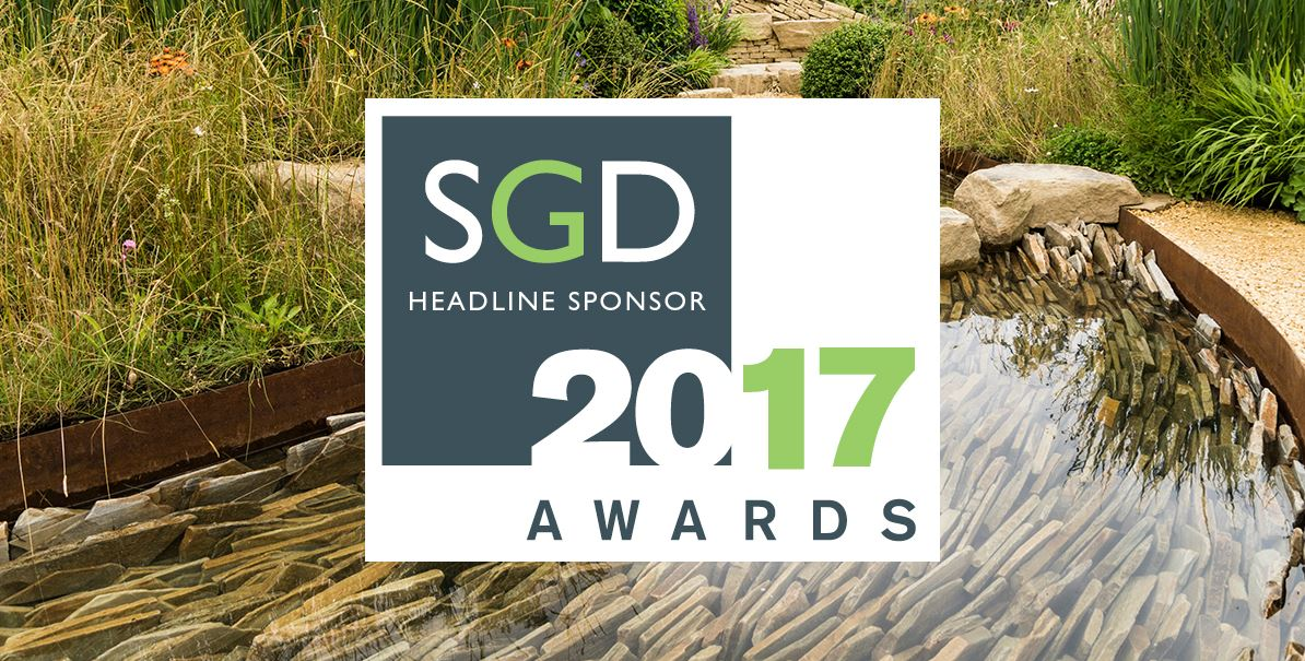 CED Headline Sponsors for SGD Awards 2017… With A Surprise In Store!