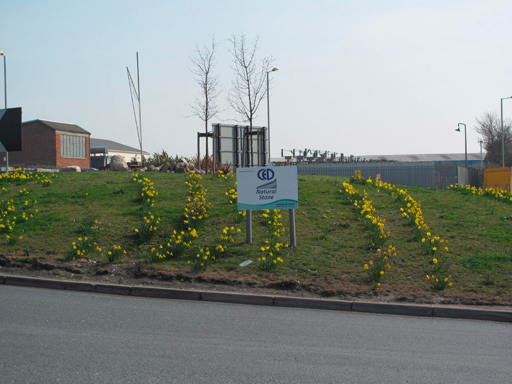 CED Sponsors Local Roundabout