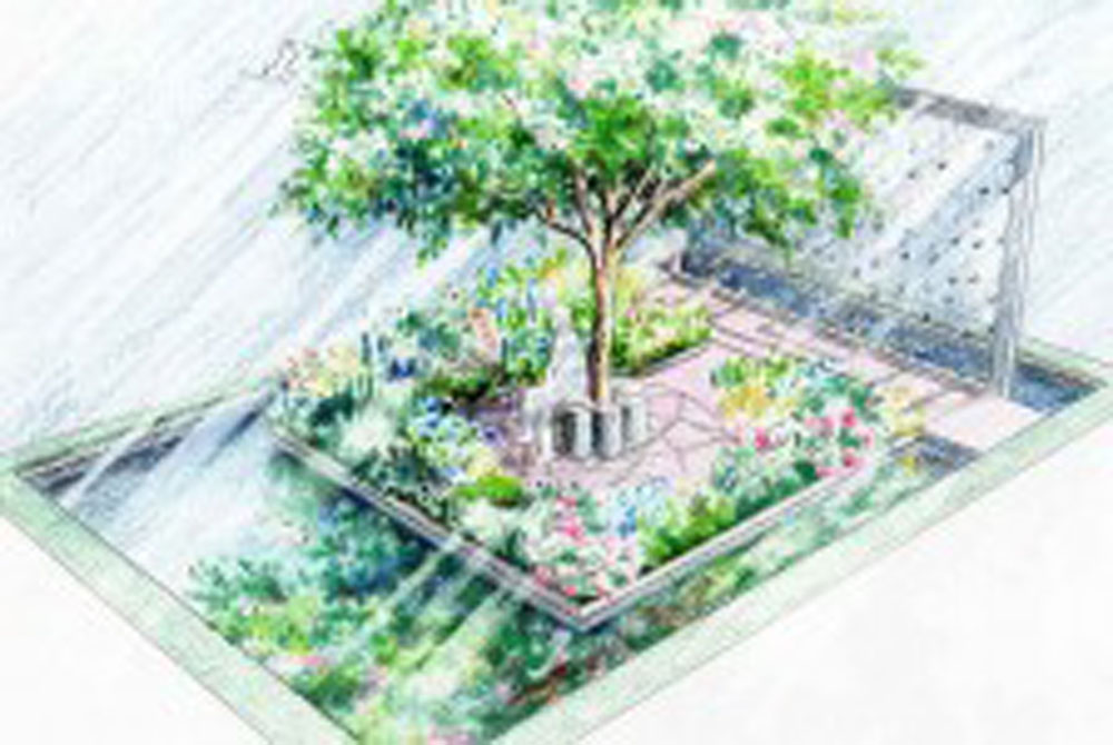 Thinking of Peace garden design