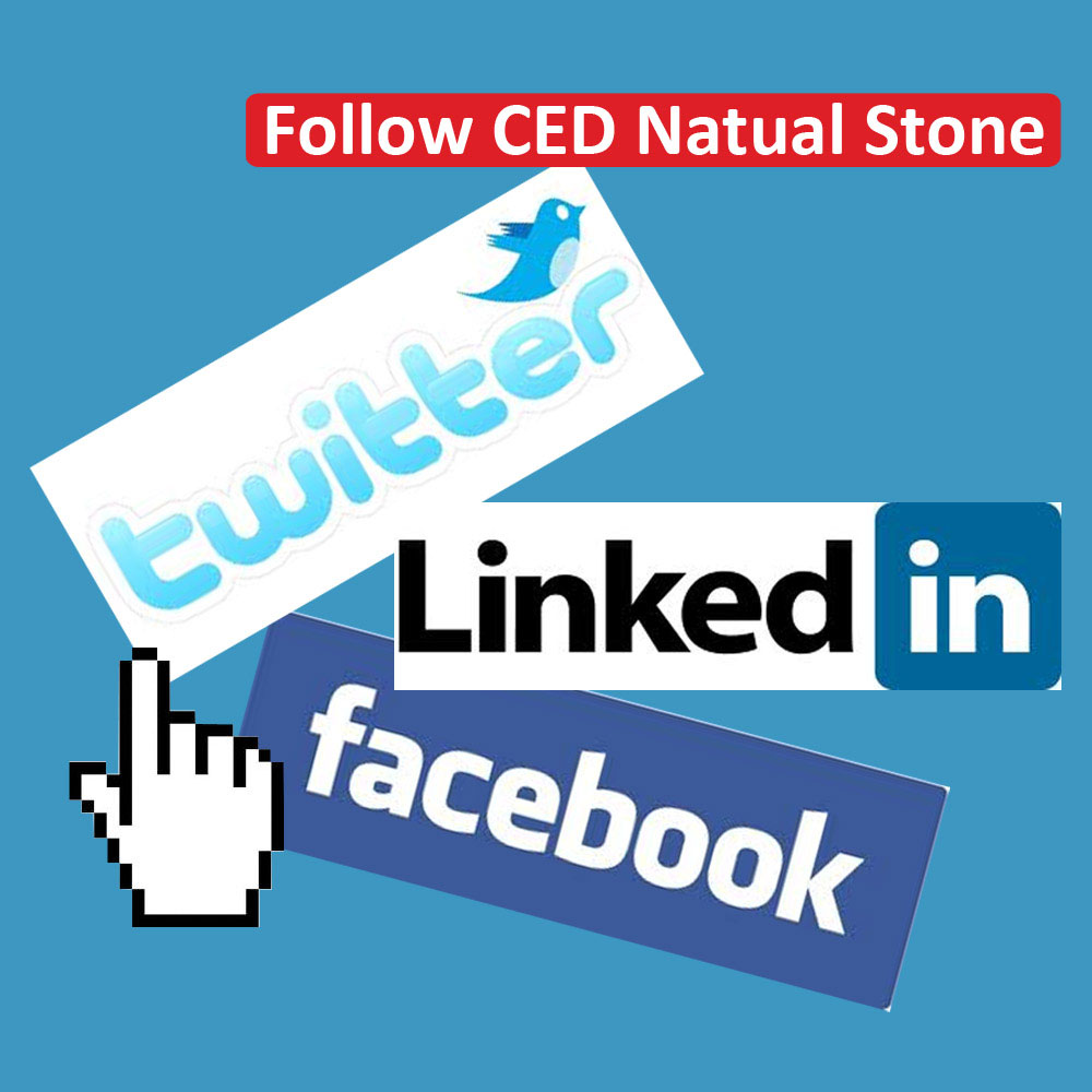 CED Social Networking
