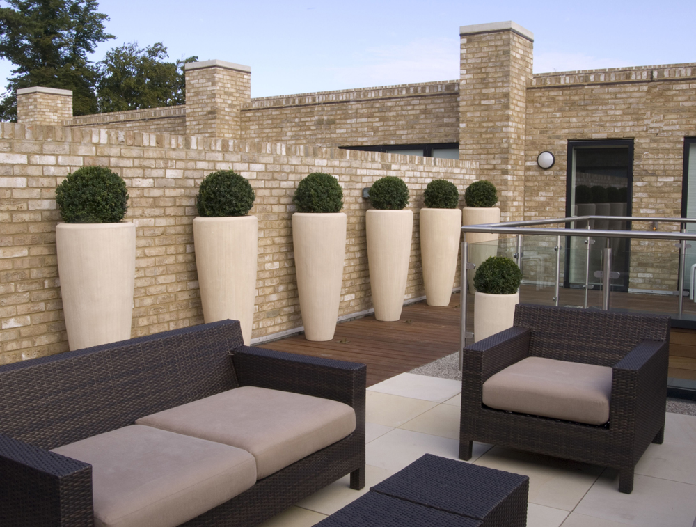 Buff sandstone paving in a private garden by Paul Dracott Garden Design.