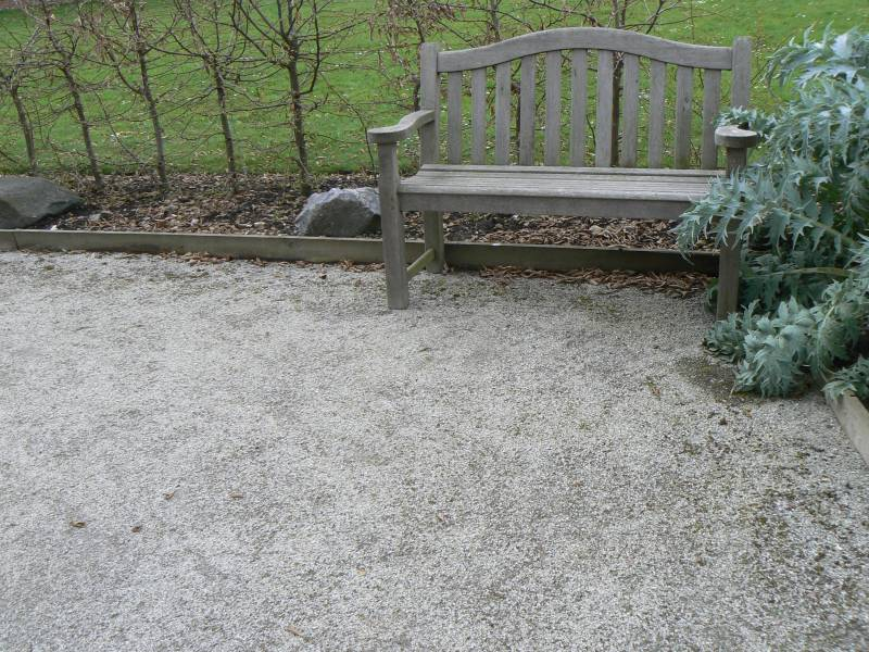 Cedec Silver' World Garden' Lullingstone Castle.