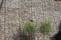 Paddlestones & Granite